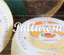 pallaresus, formaggio ovino